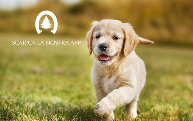 Siderpark app amica dei cani-image